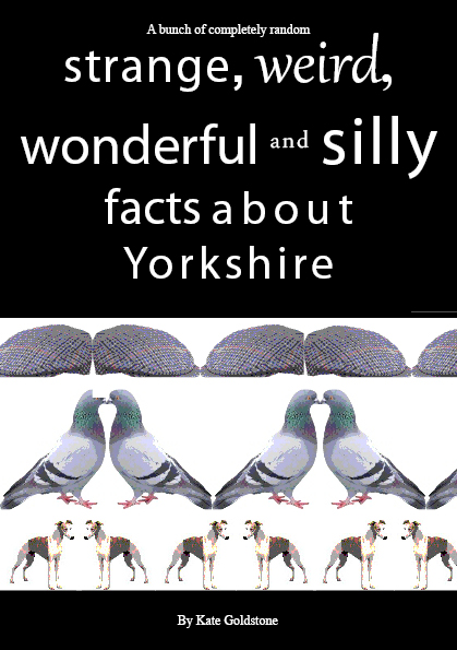 My ebooks - ebook cover for a book of silly and funny facts about Yorkshire.
